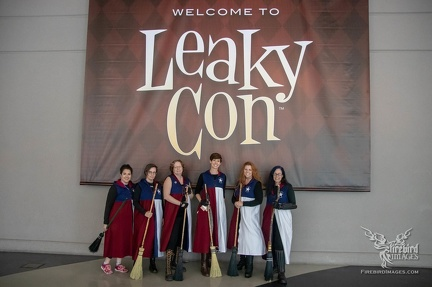LeakyCon Dallas 2018